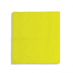 drappo bandiera guardalinee (2)